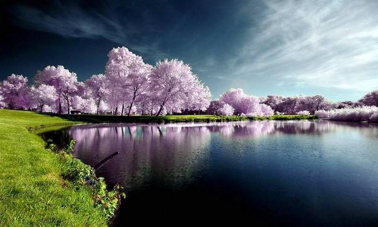 Natural Image Photography stunning natural photography