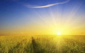 [wallcoo_com]_glory sunshine from the edge